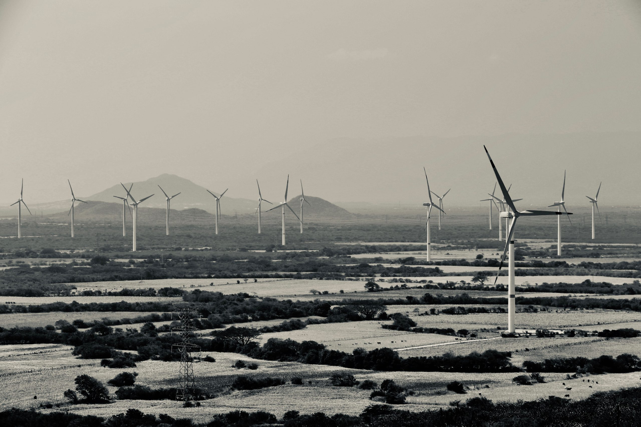black and white image of wind farms