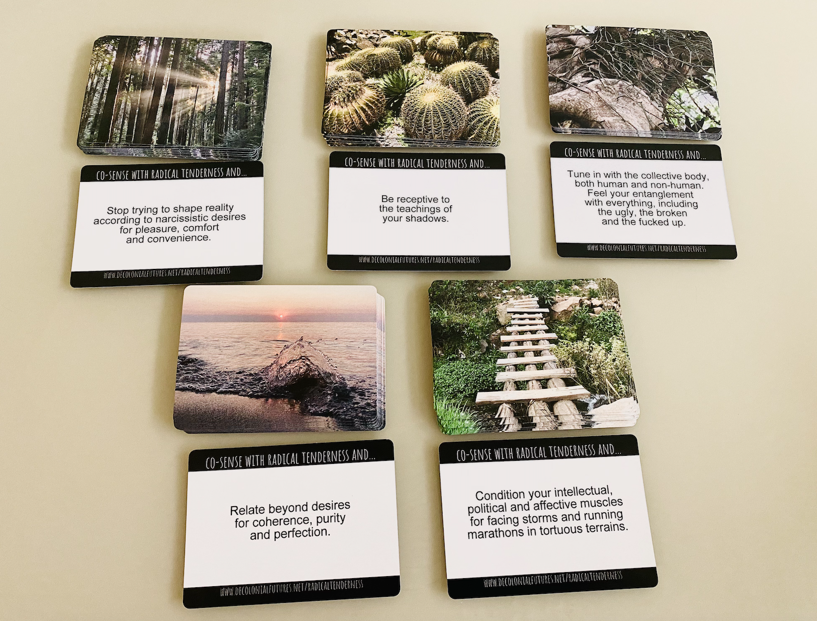 Radical tenderness cards arranged into 10 piles, showing both the front and back of the cards.