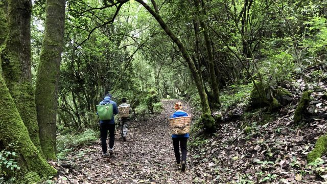 three people walking with baskets up mountain trail
