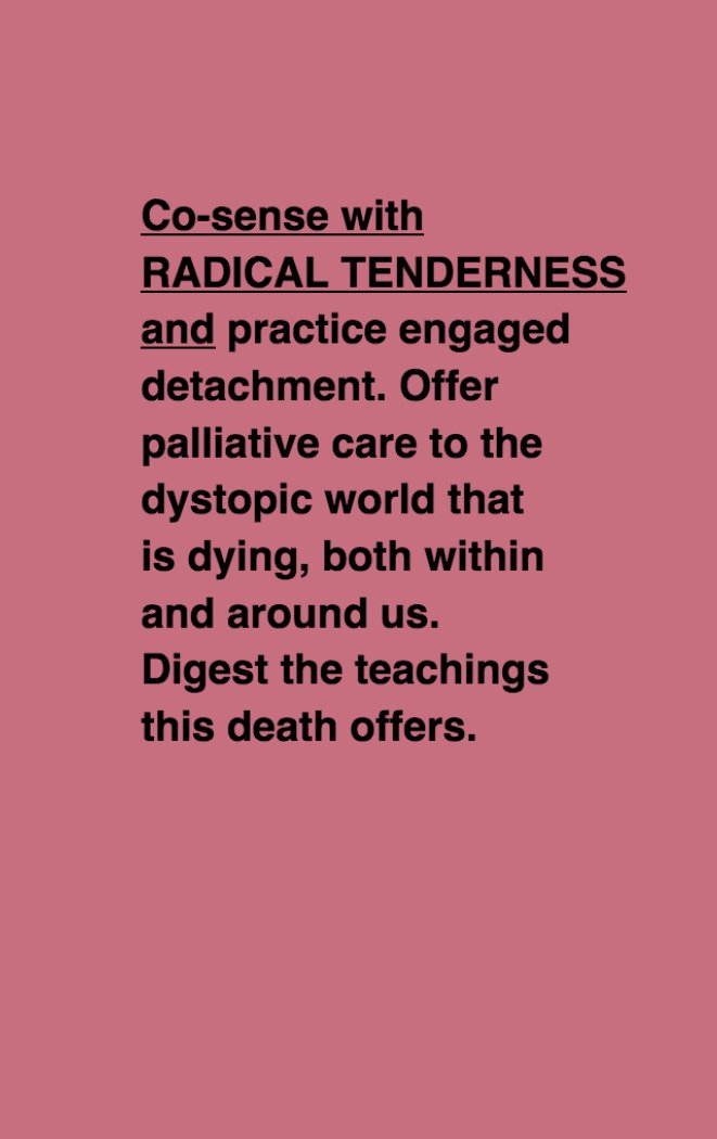 Co-sense with RADICAL TENDERNESS and practice engaged detachment. Offer palliative care to the dystopic world that is dying, both within and around us. Digest the teachings this death offers.